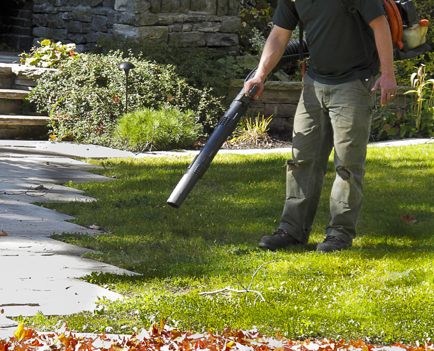 Fall Lawn Clean Up Burlington WI
