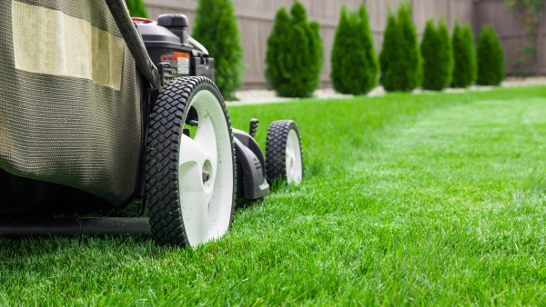 Lawn Care Maintenance Burlington WI