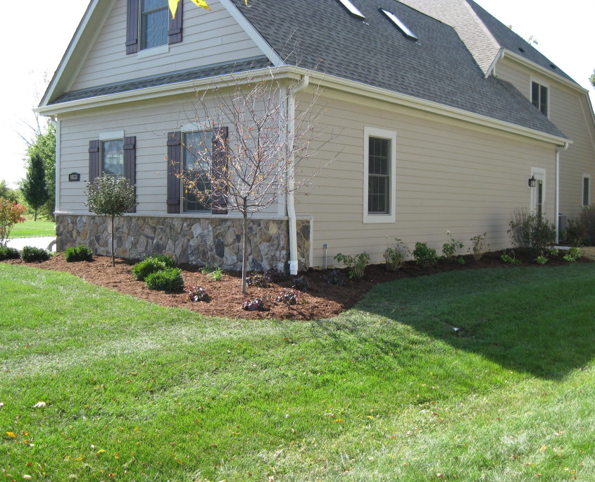 Yard Landscaping After Image