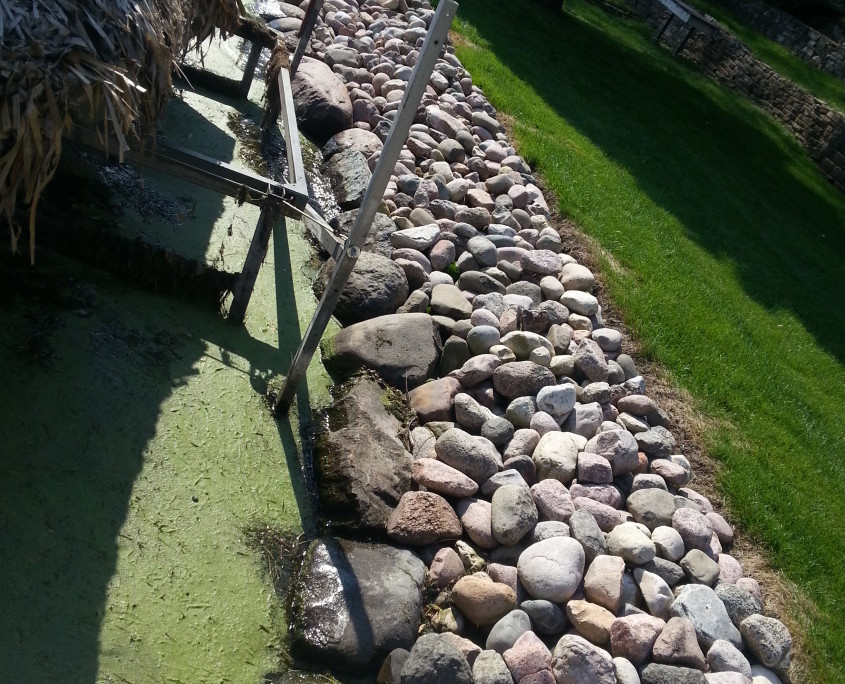 Shoreline Landscaping Restoration AFTER