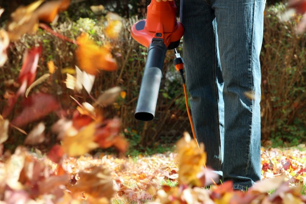 Fall Lawn Care & Cleanup Burlington, WI