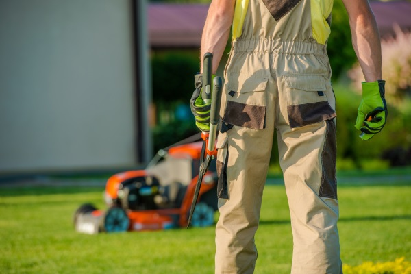 Seasonal Lawn Care Services Burlington, Wisconsin