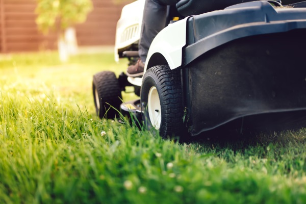 Summer Lawn Care Services Burlington, WI