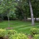 Professional Yard Maintenance Burlington