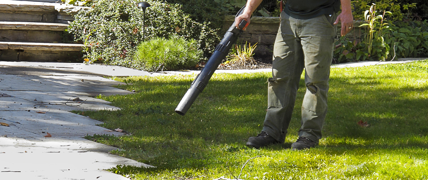 Fall Lawn Clean Up Burlington WI - Fall Clean Up Services Racine County Lawn Care & Landscape