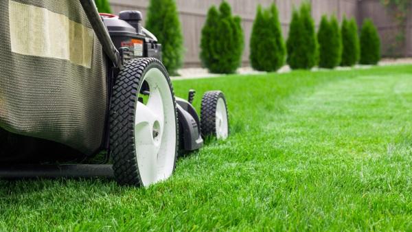 Lawn Care Maintenance Burlington WI