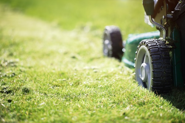 Spring Lawn Care & Cleanup Burlington, WI